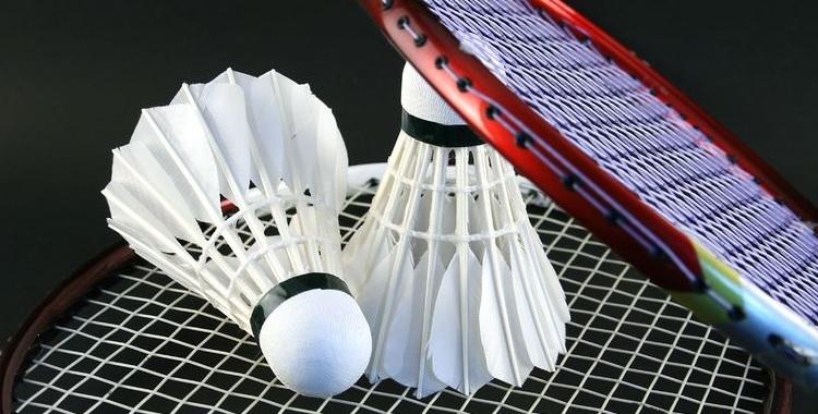 Abt. Badminton